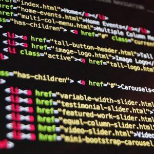 Tvorba webových aplikací a pluginů